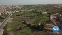 Eco-Friendly Farm Practices Grow in Senegal