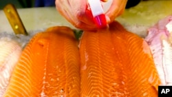 FILE - In this Apr. 25, 2003 file photo, fillets of farm-raised salmon are sprayed with water at a fish market in Portland, Maine.