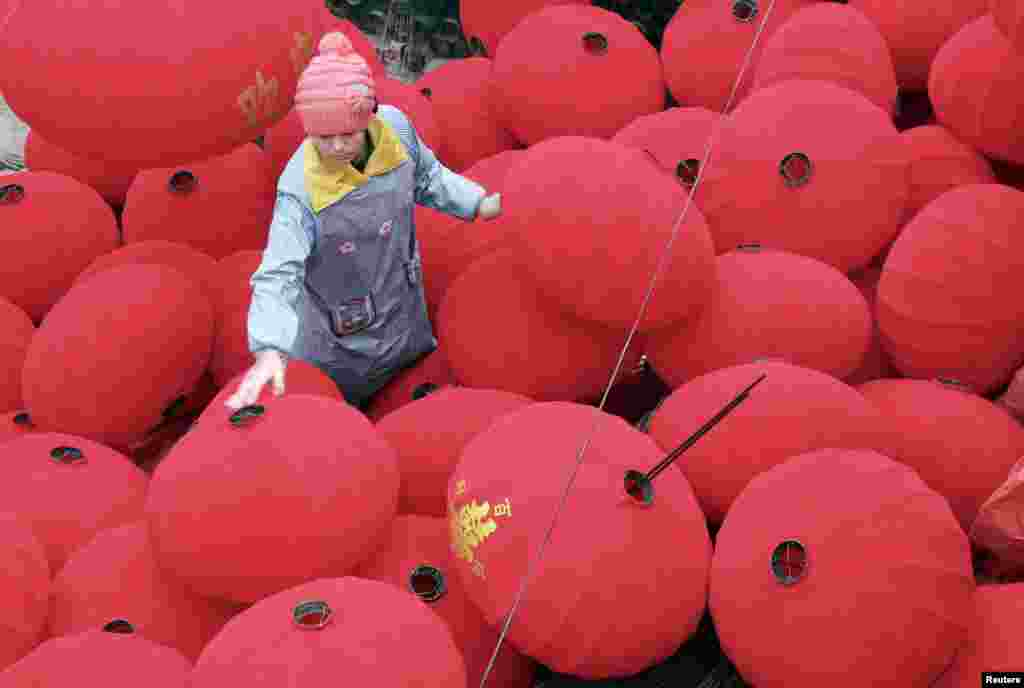 A worker walks among newly-made red lanterns ahead of the Spring Festival at a family workshop in Wenxian county, Henan province, China.