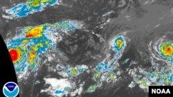 Foto satelit menunjukkan topan Iselle bergerak menuju Hawaii dengan kecepatan angin hampir 150 kilometer per jam (7/8).