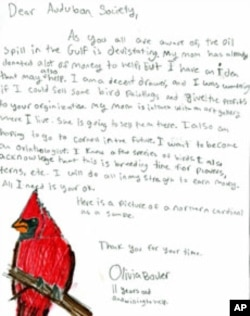 Olivia Bouler, 11, writes a letter to the Audubon Society to see if she could do something for the birds hurt by the BP oil spill