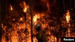 Kebakaran hutan di Medowie, Australia, pada tahun 2016.