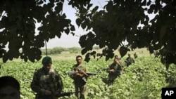 عالمی برداری منشیات سے نمٹنے میں افغانستان کی مدد کرے: اقوام متحدہ
