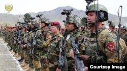 نیروهای ویژۀ افغان ۷۰ درصد عملیات نظامی را به پیش میبرند