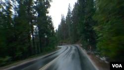 優勝美地公園聯外的41號公路蜿蜒危險(美國之音國符拍攝)