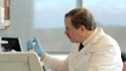 Virus combate cáncer