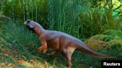 An artist's illustration of Psittacosaurus, a little dinosaur with a parrot-like beak and bristles on its tail that roamed thick forests in China about 120 million years ago is shown in this image released Sept. 15, 2016. (Courtesy Jakob Vinther/Universit