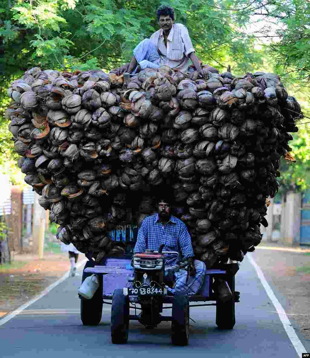 Sri Lankan Tamil farmers transport coconut husk in Jaffna, 400 kilometers (250 miles) north of the capital Colombo.