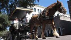 Tourists on a carriage tour in Charleston in February. South Carolina tourism officials say tourism has grown to an $18.4 billion industry in the state.