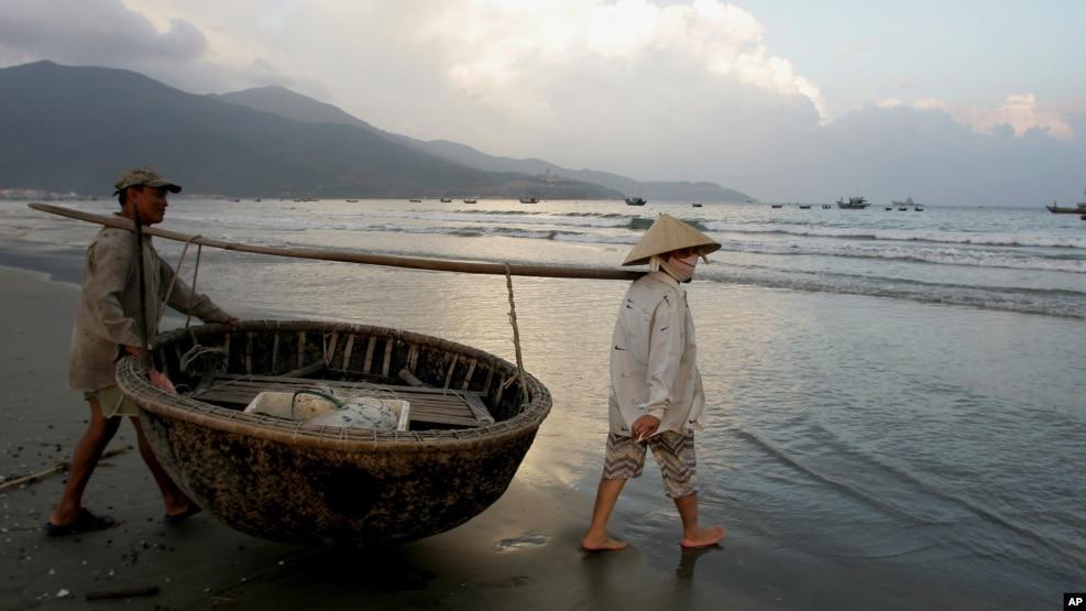 Ngư dân kéo thuyền thúng vào bờ ở Đà Nẵng.