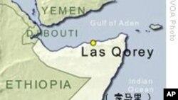 埃及船员制服并杀死两名索马里海盗