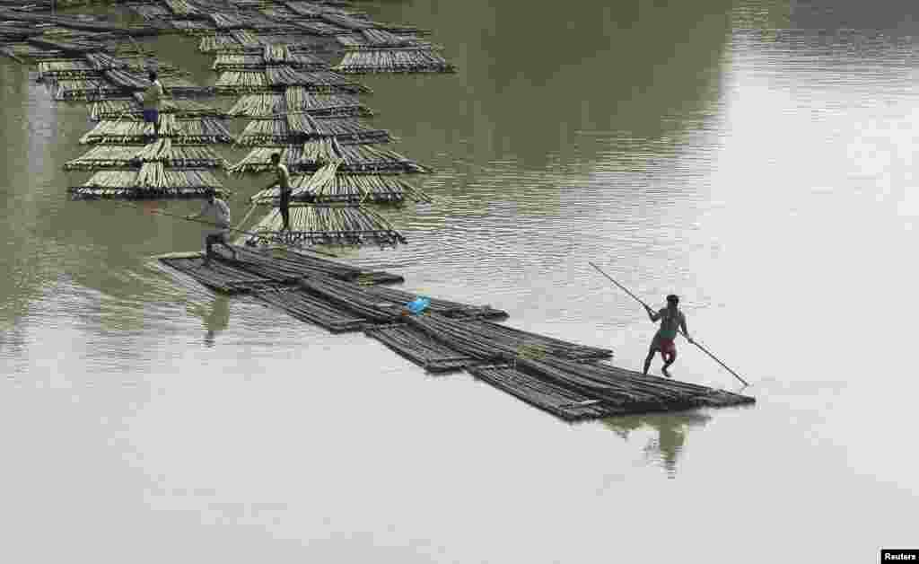 Bamboo logs are transported down the river Howrah near Chakmaghat village in the northeastern state of Tripura, India.