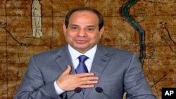FILE - Egyptian President Abdel-Fattah el-Sissi in a televised broadcast in Cairo, July 7, 2014.