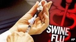 Vắc xin chống virus H1N1 gây bệnh cúm heo