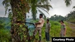 Penebangan pohon kelapa sawit di Leuser Ecosystem, Indonesia. (Goldman Environmental Prize)