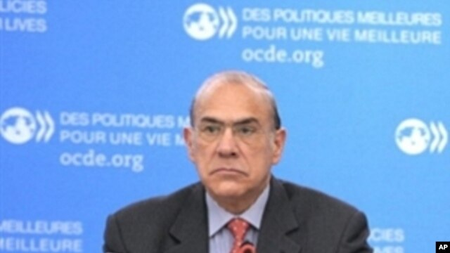 OECD Secretary General Angel Gurria listens on November 17, 2010 at the start of a OECD Working Party on Small and Medium-sized Enterprises and Entrepreneurship (WPSMEE) at the OECD headquarters in Paris.