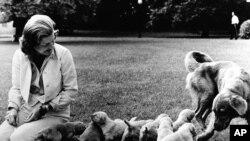Перша леді Бетті Форд та цуценята Ліберті