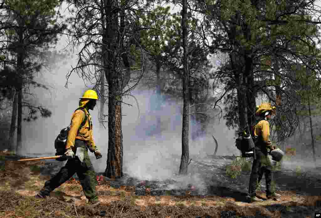 AmeriCorps volunteer firefighters help contain a spot fire in an evacuated area of forest, ranches and residences, in the Black Forest wildfire area, north of Colorado Springs, Colorado, June 13, 2013.