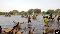 Des déplacés fuyant les attaques de Boko Haram au Nigeria et traversant le lac Tchad (AP Photo/Jerome Delay)