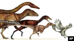 """Investigadores fueron capaces de crear un árbol genealógico detallado de los """"teródopos"""" hasta descender en aves."""