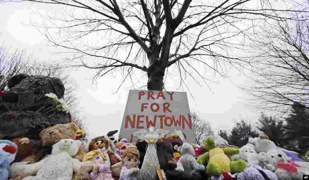 2012年12月17日,康州纽敦的纽敦村公墓附近的一棵树下的毛绒动物和一块请求人们祷告的标语。