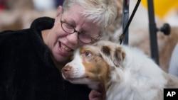 Kholoe, seekor anjing jenis Australian Shepherd, bersama perawatnya, Maureen Grentus dalam sebuah kompetisi anjing di New York. (AP/John Minchillo)