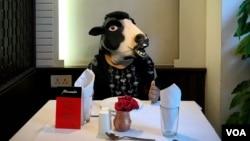 گائے کے ماسک میں ایک خاتون ڈائنگ ٹیبل پر۔