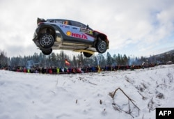 Well, you can drive fast in Sweden if you're in a race! Here, Thierry Neuville of Belgium and his co-driver Nicolas Gilsoul race in Rally Sweden. This is the 2nd round of the FIA World Rally Championship, 2016 in Hagfors, Sweden.