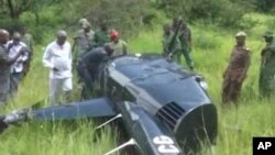 Tanzanian officials walking towards a downed helicopter. The pilot was shot down by poachers he chased. (ITV Tanzania via AP)
