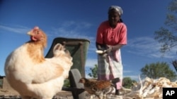 O FMI sugere que os investimentos têm que beneficiar mais as populações.