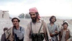 مرگ بن لادن به معنی پايان کار القاعده نيست