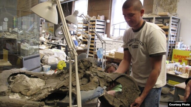 Eric Lund discovered the Nasutoceratops skull in 2006 as a graduate student at the University of Utah. Courtesy: University of Utah