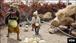 Tingginya kenaikan harga pangan di Asia menyebabkan jutaan orang hidup miskin di kawasan ini.