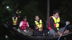 Floods Force Thais to Track Down Crocodiles in Bangkok Neighborhoods