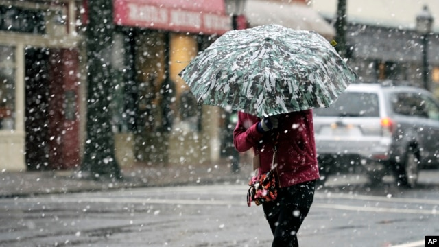 A woman crosses a street in the falling snow in the historic Old Town Alexandria, Virginia, March 6, 2013.