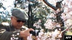 "Vaşinqtona bahar ""Cherry Blossom""la gəlir (VİDEO)"