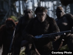 "Andy Serkis plays Simian Caesar in ""War for the Planet of the Apes."" (Courtesy 20th Century Fox)"