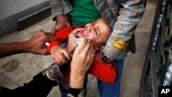 Một cậu bé nhận liều chủng ngừa bại liệt trong chiến dịch chủng ngừa bệnh bại liệt ở Sana'a, Yemen ngày 15/8/2015.