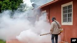 El estado de Florida ha iniciado una agresiva campaña para controlar la población de mosquitos en Miami.