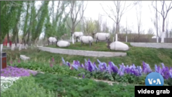 Expo Hortikultura Internasional Beijing 2019. (Foto: VOA/videograb)