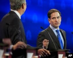 Cựu Thống đốc Jeb Bush (trái) chỉ trích Thượng nghị sĩ Marco Rubio đã không biểu quyết ở quốc hội để đi vận động tranh cử.