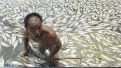 焦点对话(1)中国的水危机-问题的严重性