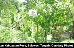 Fokus Keong Oncomelania, vektor perantara penyebaran penyakit schistosomiasis di lembah Napu dan Tomehipi Lore Barat, Kabupaten Poso, Sulawesi Tengah diberi tanda untuk mencegah penduduk masuk ke arah fokus tanpa memakai alat pelindung diri. (Courtesy: Di