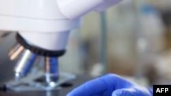 Kanser İlacı Avastin'in Faydası Sorgulanıyor