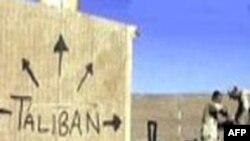 Əfqanıstandakı taliblər Üsama Bin Ladeninin öldürüldüyünün təsdiq edilmədiyini bildirib