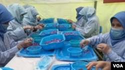در میان ۳۰ کشور جهان که زعفران کشت می کند، پس از ایران و هند، افغانستان بیشترین زعفران را تولید می کند