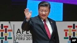 Chủ tịch Trung Quốc Tập Cận Bình tại Hội nghị Thượng đỉnh Hợp tác Kinh tế Châu Á-Thái Bình Dương (APEC) ở Lima, Peru.