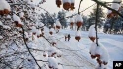 Првиот снег зимава во Македонија задава главоболки