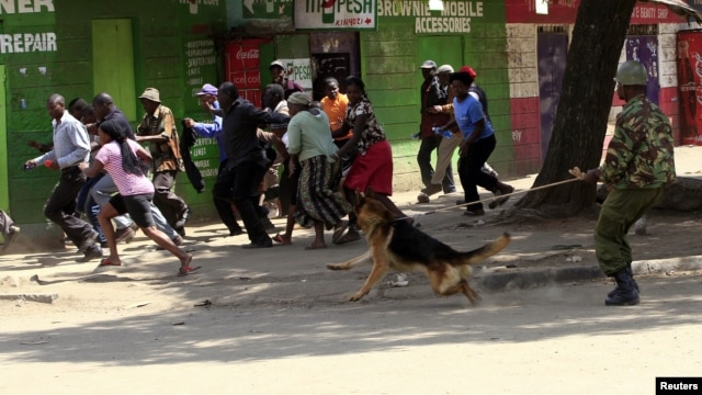 A policeman uses a dog to disperse rioters during the second day of skirmishes in the Eastleigh neighbourhood of Kenya's capital Nairobi, November 19, 2012.