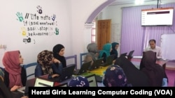 دختران هراتی مصروف آموزش کود نویسی کمپیوتر